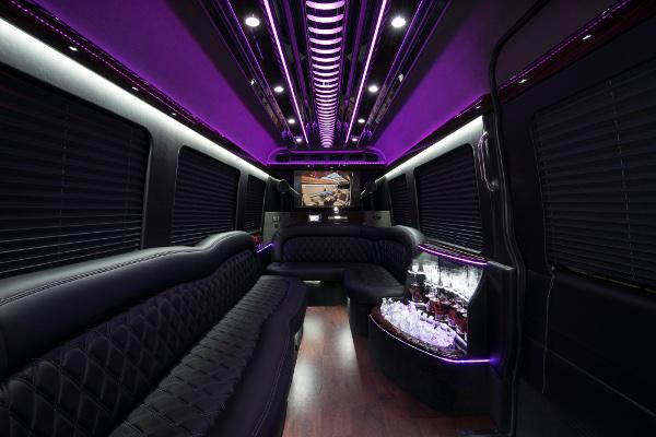 12 Passenger Party Buses Washington