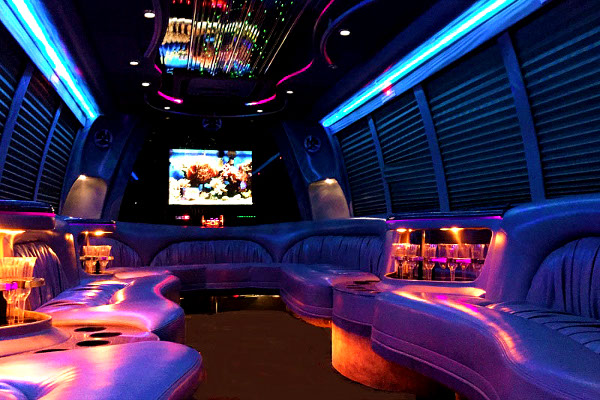 Washington 18 Passenger Party Bus